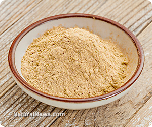 Maca-Powder-Bowl-Table
